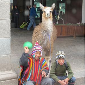 boys with llama